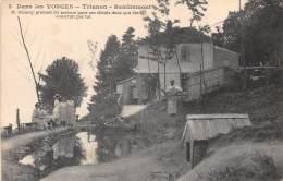 88 - VOSGES / Remiremont - 882040 - Trianon - Mr Démésy Prenant Du Poisson Dans Son étang - Remiremont
