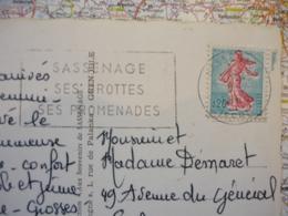 Sassenage Ses Grottes Ses Promenades 8/07/1964 Sur CP Sassenage Grotte Carrée Et La Passerelle - Postmark Collection (Covers)