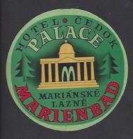 étiquette Valise  -   Hôtel Palace Cedok  à  Marianské Lazné (Marienbad)   République Tchèque - Hotel Labels