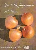Catalogo 1960 Fratelli Ingegnoli Milano - Jardinage