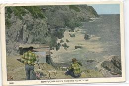 1 Postcard Newfoundland And Labrador Newfoundland's Rugged Coastline - St. John's