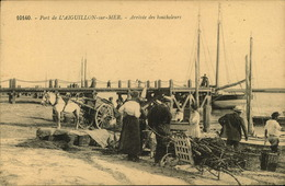 N°655 RRR GG PORT DE L AIGUILLON SUR MER ARRIVEE DES BOUCHOLEURS - Other Municipalities