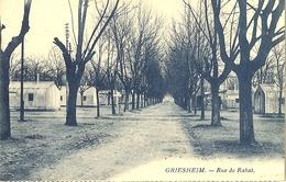 67 GRIESHEIM MOLSHEIM RUE DE RABAT EN 1925 - Other Municipalities