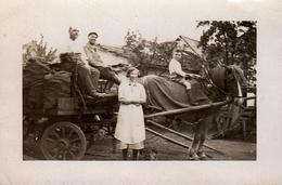 Photo Originale Attelage Et Livreurs De Charbon Ou De Pommes De Terre Vers 1920/30 - Livraison à Domicile ! - Métiers