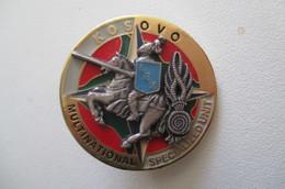 Insigne KOSOVO  Multinational - Police & Gendarmerie