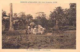 Afrique > Côte-d'Ivoire A LA FERME Missions Africaines Lyon ( Mission Religion Lescuyer 17) - Côte-d'Ivoire