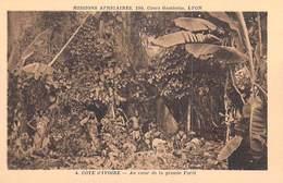 Afrique > Côte-d'Ivoire Au Coeur De La Grande Forêt -  Missions Africaines Lyon ( Mission Religion Lescuyer 4) - Côte-d'Ivoire