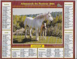 Almanach Du Facteur 1994 - Big : 1991-00