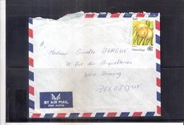 Lettre De Mauritius Vers Belgique - Fruits (à Voir) !! Lettre Déchirée !! - Maurice (1968-...)