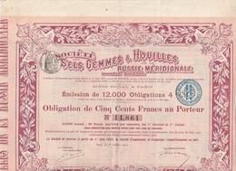 OBLIGATION DE 500 FRANCS - SOCIETE DES SELS GEMMES & HOUILLES DE LA RUSSIE MERIDIONALE - ANNEE 1900 - Mines