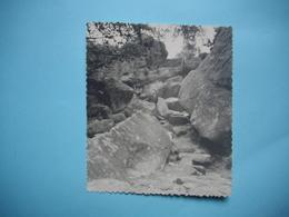 PHOTOGRAPHIE FORET DE  FONTAINEBLEAU -  77  - Rochers Du Bas Bréau   - 1962   -  8,7  X  10,2   Cms -  Seine Et Marne - Fontainebleau