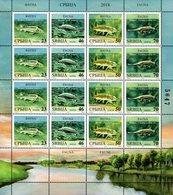 Serbia - 2018 - Fauna - Fishes - Mint Stamp Sheet - Serbie