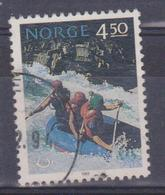 Norvegia - Rafting - Rafting