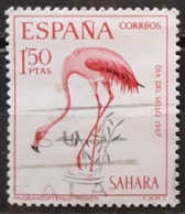SAHARA ESPAÑOL 1967 Stamp Day - Birds. USADO - USED. - Sahara Espagnol
