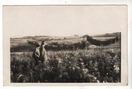 Nr.+ 483,  FOTO-AK, WK I, Nogent-I`Abbesse, Straßenblende - Guerre 1914-18