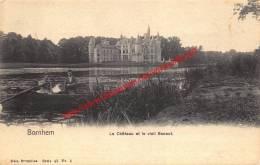 Le Château Et Le Vieil Escaut - Nels Serie 43 No 3 - Bornem - Bornem