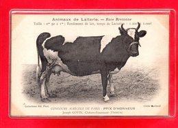 29-CPA CLOHARS-FOUESNANT - CONCOURS AGRICOLE DE PARIS - Clohars-Carnoët