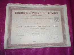 MINIERE DU TONKIN (action Ordinaire 100 Francs) - Shareholdings