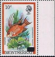 MONTSERRAT 1983 Fish 70c On 10c MARG.ERROR:INV.OVERPRINT [Fehler,erreur,errore,fout] - Montserrat