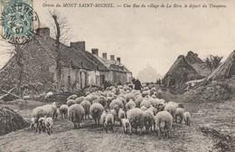 + CPA 50 Grèves Du Mont Saint Michel - Village De La Rive - Départ Du Troupeau De Moutons + - Le Mont Saint Michel