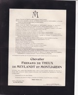 IXELLES Fernand De THEUX De MEYLANDT époux COTTEAU De PATIN 1870-1919 Faire-part Mortuaire - Esquela
