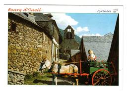 31 BOURG D'OUEIL N°9501 Environs De Luchon En 2002 Attelage âne - Luchon