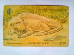 23CBVA Lizard $5 - Virgin Islands
