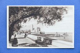 Cartolina Trani - Il Duomo Visto Dalla Villa Comunale - 1950 Ca. - Bari