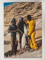 2 CPSM MAURITANIE ETHNOLOGIE - Pêche à Nouadhibou, Retour De Pêche - Mauritanie