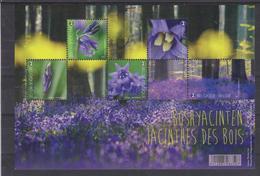BE 2017 - 4672/76 XX Ou BL 247 XX - Bois En Fleur - Lers Jacinthes Des Bois - Belgique
