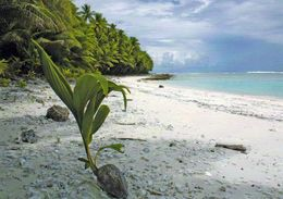 1 AK American Samoa * Ansicht Der Insel Swains * - American Samoa