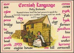 The Cornish Language, C.1980 - Murray King Postcard - England