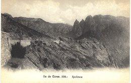 Carte Postale Ancienne De SPELONCA - France