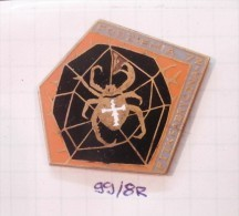 European Garden CROSS SPIDER Net '72 (Czechoslovakia) PTTK Natural, Diadem Spider, Araneus Diadematus - Animaux