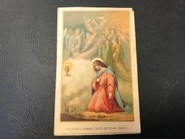«souffrez Comme Jesus Et Pour Jesus» 1886 - Images Religieuses