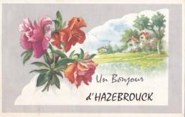 Un Bonjour D'Hazebrouck Circulée En 1965 - Hazebrouck