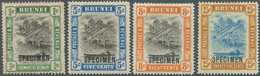 05015 Brunei: 1907, 'Huts And Canoe' Four Different Stamps With Black SPECIMEN Opt. Incl. The 1c. With Rev - Brunei (1984-...)