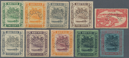 05035 Brunei: 1924/1933, 'Huts And Canoe And Water Village' Ten Different Stamps Perforated SPECIMEN, Mint - Brunei (1984-...)