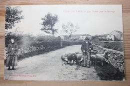 Types Du Tarn - Départ Pour Le Paturage - France