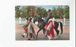 NIMEY (NIGER) SORTIE D'UN CHEF (BELLE ANIMATION) - Niger