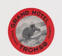 Vieux Papier : étiquette  Hotel : Grand  Hotel TROMSO , Norvège,Norway , Ours - Hotel Labels