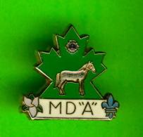 "PIN'S - ÉPINGLETTES - ASSOCIATIONS DES CLUB LIONS -  MD "" A "" - CHEVAL - - Associations"