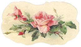 Chromo Découpé Et Gaufré, Fleurs, Roses ( Sans Doute Klein ) ( VP ) - Fleurs