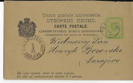 MONTENEGRO - 1893 - CARTE ENTIER POSTAL RARE AYANT VOYAGEE De CETINJE => SARAJEVO - Montenegro