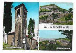 SALUTI DA BORSELLI - VEDUTE - VIAGGIATA FG - Firenze