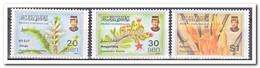 Brunei 1997, Postfris MNH, Plants - Brunei (1984-...)