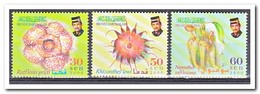 Brunei 2000, Postfris MNH, Plants - Brunei (1984-...)