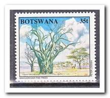 Botswana 1994, Postfris MNH, Trees - Botswana (1966-...)