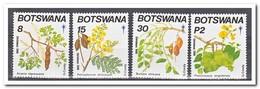 Botswana 1990, Postfris MNH, Plants, Christmas - Botswana (1966-...)