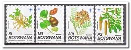 Botswana 1991, Postfris MNH, Plants, Christmas - Botswana (1966-...)